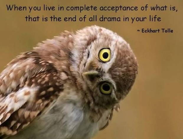 When you live in complete acceptance - Eckhart Tolle